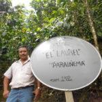 À 124,50 $ par livre, le tirage au sort de la coupe de café à l'honneur du Honduras