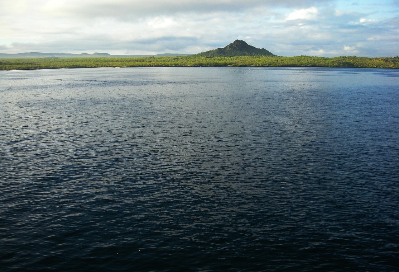 """Îles Galapagos """"width ="""" 1280 """"height ="""" 874 """"/> </strong> </p> <p> <strong> Le café sur les îles Galápagos </strong> se produit apparemment, et c'est étant dirigé par les conservateurs marocains Scott Henderson et Maria Elena Guerra, qui s'intéressent autant à la protection d'une espèce d'arbre indigène appelée scalesia que dans le secteur du café, selon un nouveau profil fascinant de la Semaine du PRI: </p> <blockquote> <p> Personne ne vient aux îles Galapagos pour le café. Mais Scott Henderson espère changer cela. </p> <p> Il n'y a pas de tortue géante autour de sa ferme dans les hauts plateaux de Santa Cruz, la plus populaire des îles Il n'y a pas d'iguanes marins ou de mâchoires bleues. Juste Henderson et ses grains de café rouge mûrs. Sa ferme, appelée Lava Java, est l'opération de la soupe aux noix du café gastronomique. Il cultive les haricots, les pique et les écrase, les trempe pour fermenter les sucres, les sèche et les rôtit, puis les vend à Les visiteurs étrangers ont envie de plus d'un aperçu de la faune célèbre des îles. </p> </blockquote> <p> <strong> Plus tôt cette semaine, nous avons partagé des nouvelles </strong> de l'association des associations de café de l'Association spécialisée du café intitulée World Coffee Events Plusieurs événements ont eu lieu à Dubaï l'année prochaine. À la suite d'une pièce de Sprudge qui soulève de nombreuses préoccupations humanitaires dans les EAU, comme l'esclavage moderne et les abus bien documentés contre la communauté GLBTQ, il semble que SCA repense la décision. Plus tard le jour de l'annonce, le groupe a publié un communiqué disant qu'il suspendait la planification des évènements de Dubaï en attendant d'autres discussions avec les conseils d'administration de SCA et WCE. Voici un extrait de cette déclaration: </p> <blockquote> <p> Nous avons suivi la réponse à l'annonce et avons entendu parler de nombreux membres de notre communauté aujourd'hui au sujet de cette décision. Il est clair que les problèmes des dro"""