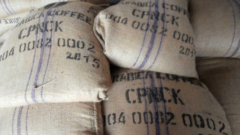 Café CPNCK Kivu