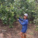 Melanie HerreraDaily Coffee News par Roast Magazine