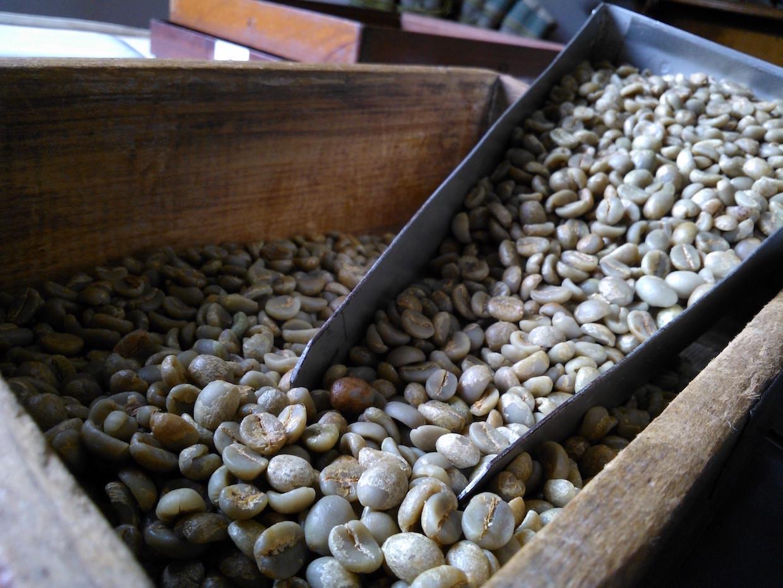 Café Bourbon Jaune Brésil