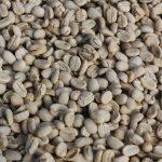 Devises et taux de changeDaily Coffee News by Capsules Café