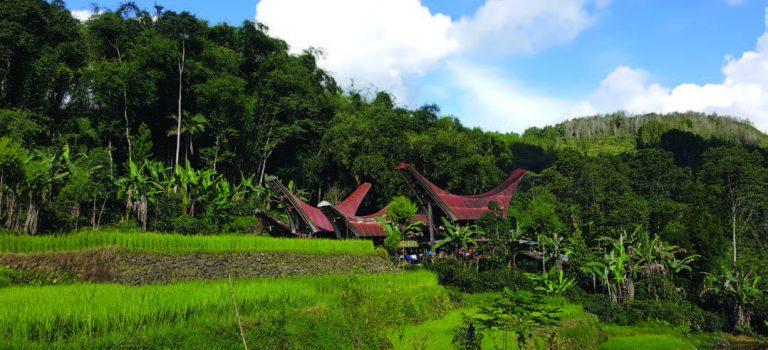 Café relationnel en IndonésieDaily Coffee News by Capsules Café