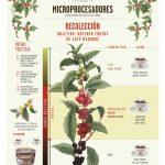 Coffee for Peace lance des affiches gratuites sur les meilleures pratiques de traitementDaily Coffee News by Capsules Café