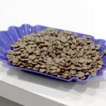 Qu'est-ce que le café de spécialité? SCA propose une définition fraîche